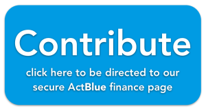 ActBlue contrubution button